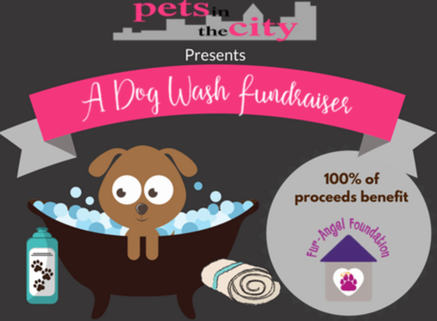 Dog Wash Fundraiser for Fur-Angel Foundation